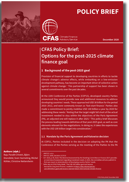Options for the post-2025 climate finance goal
